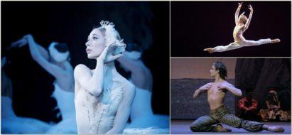 collage_autunno_danza